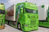Scania_New_520S_V8_Mueller_Ermensee_Excellence_Lézard.jpg